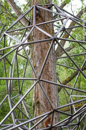 El nido de Grado de pico FASE1 web 112017