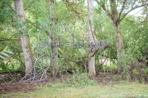 El nido de Grado de pico FASE1 web 12017