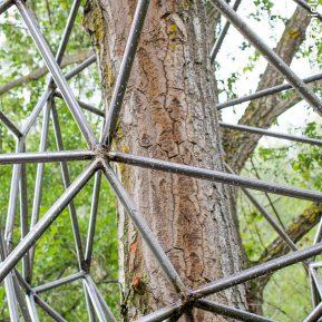 El nido de Grado de pico FASE1 web 122017