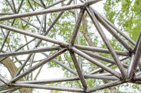 El nido de Grado de pico FASE1 web 162017