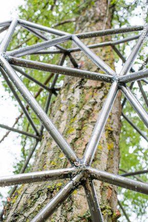 El nido de Grado de pico FASE1 web 172017