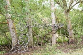 El nido de Grado de pico FASE1 web 192017
