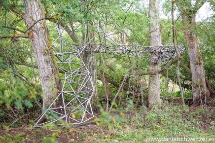 El nido de Grado de pico FASE1 web 22017