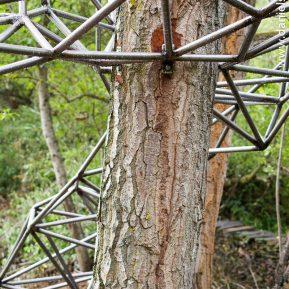 El nido de Grado de pico FASE1 web 252017