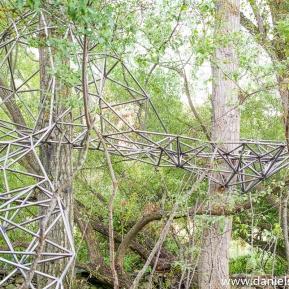 El nido de Grado de pico FASE1 web 32017