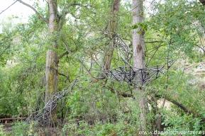 El nido de Grado de pico FASE1 web 42017