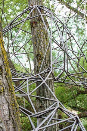 El nido de Grado de pico FASE1 web 62017