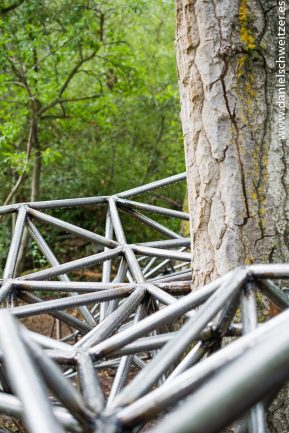 El nido de Grado de pico FASE1 web 92017